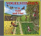 Vogelstimmen in Feld und Flur, 1 Audio-CD / Vogelstimmen, Audio-CDs Ed.2