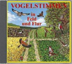 Vogelstimmen in Feld und Flur, 1 Audio-CD / Vog...