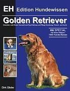 Golden Retriever - Glebe, Dirk