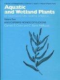 Angiosperms: Monocotyledons