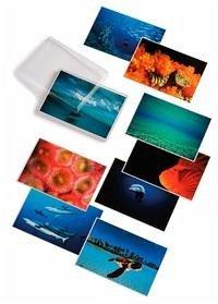 Water Light Time. 45 farbige Postkarten