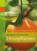 Das große Ulmer-Buch der Zitruspflanzen