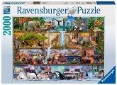 Ravensburger 16652 - Aimee Steward, Großartige Tierwelt, 2000 Teile Puzzle