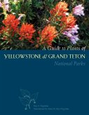 A Guide to Plants of Yellowstone and Grand Teton National Parks: Natural History Notes and Uses