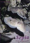 Sepia und die Tintenfischfamilie