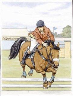 Favorite Horses: Coloring Book