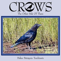Crows: The Other Side of Them
