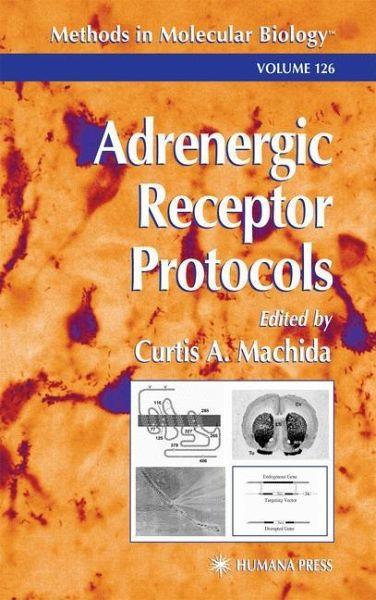 Adrenergic Receptor Protocols - Machida, Curtis A. (ed.)