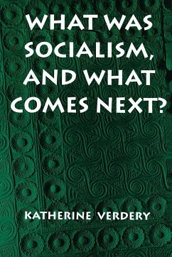 What Was Socialism, and What Comes Next? - Verdery, Katherine