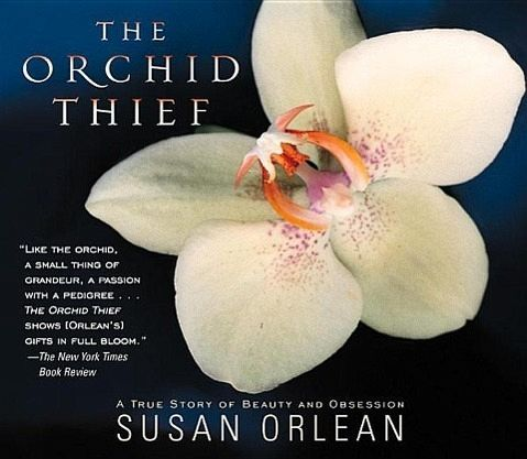 THIEF THE ORCHID
