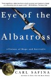 Eye of the Albatross