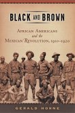 Black and Brown: African Americans and the Mexican Revolution, 1910-1920