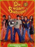 Die wilden Siebziger - Die komplette 2. Staffel (5 DVDs)