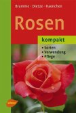 Rosen kompakt