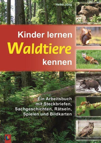 Kinder lernen Waldtiere kennen - Jung, Heike