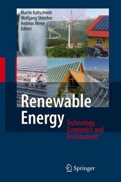 Renewable Energy - Kaltschmitt, Martin / Wiese, Andreas / Streicher, Wolfgang (eds.)