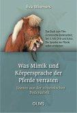 Was Mimik und Körpersprache der Pferde verraten