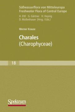 Süßwasserflora von Mitteleuropa 18. Charales - Krause, Werner