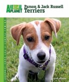 Parson & Jack Russell Terriers