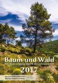 Baum und Wald 2017