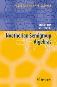 Noetherian Semigroup Algebras - Jespers, Eric;Okninski, Jan