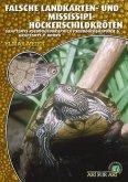 Falsche Landkarten-u.Missisippi-Höckerschildkröte