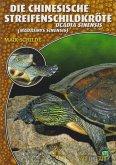 Die Chinesische Streifenschildkröte