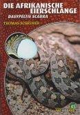 Die afrikanische Eierschlange