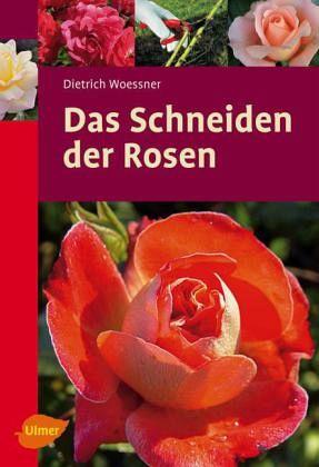 Das Schneiden Der Rosen Von Dietrich Woessner Portofrei Bei Bucher De Bestellen