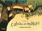 Calvin und Hobbes 08