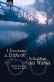 Schatten des Wahns / Stachelmann Bd.3