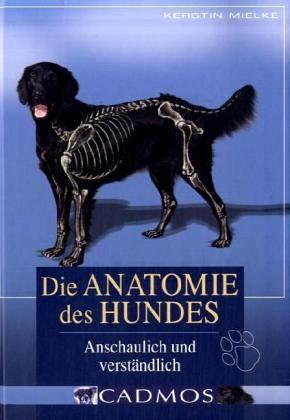 Die Anatomie des Hundes von Kerstin Mielke - Buch - bücher.de