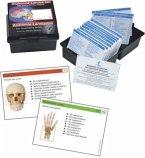 Das menschliche Skelett, Lernkarten