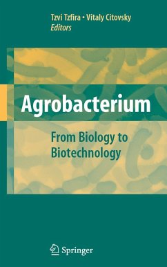 Agrobacterium - Tzfira, Tzvi / Citovsky, Vitaly (eds.)