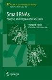 Small RNAs