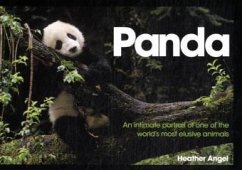 Panda. An Intimate Portrait of One of the World's Most Elusive Creatures.