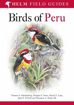 Birds of Peru - Schulenberg, Thomas S.; Lane, Daniel F.; Stotz, Douglas F.