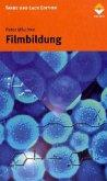 Filmbildung in modernen Lacksystemen