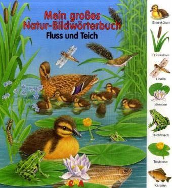 Mein großes Natur-Bildwörterbuch - Fluss und Teich