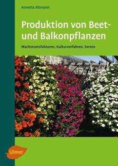 Produktion von Beet- und Balkonpflanzen