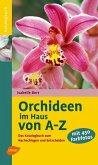 Orchideen im Haus von A - Z