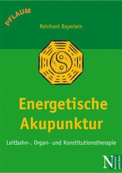 Energetische Akupunktur - Bayerlein, Reinhard; Bayerlein, Brigitte