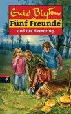 Fünf Freunde und der Hexenring / Fünf Freunde Bd.53