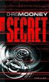 Secret - Bd. 2