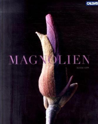 Magnolien - Kipp, Oliver