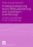 Professionalisierung durch Milieuaktivierung und Sozialraumorientierung?