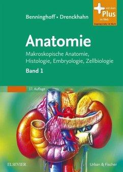 Benninghoff, A: Anatomie 1 - Benninghoff, Alfred; Drenckhahn, Detlev