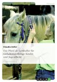 Das Pferd als Lernhelfer für verhaltensauffällige Kinder und Jugendliche