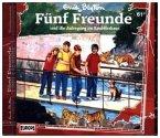 Fünf Freunde und die Aufregung im Raubtierhaus / Fünf Freunde Bd.61 (1 Audio-CD)