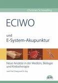 ECIWO und Embryo-System-Akupunktur